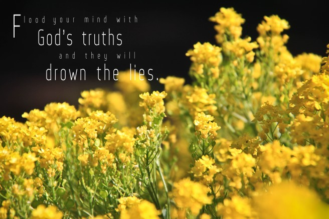 Truth and lies, God's truths, drown lies,overwhelm  the lies